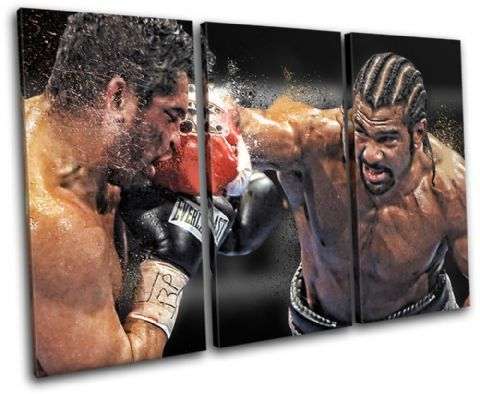 Boxing David Haye Sports - 13-1917(00B)-TR32-LO